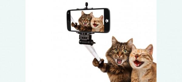 Maak mooie foto's met je smartphone