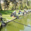 Tussen vijvers en vissen